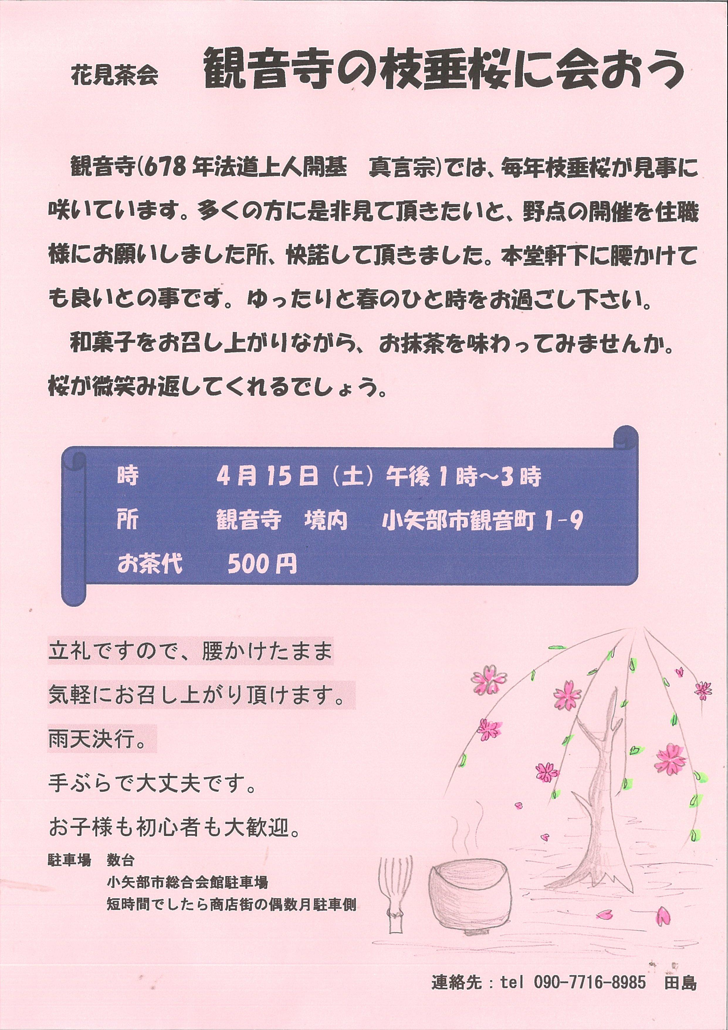 花見茶会 観音寺の枝垂桜に会おうtags[富山県]