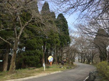 お花見情報♪倶利伽羅県定公園-ソメイヨシノ・八重桜-tags[富山県]