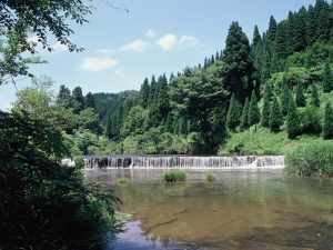 稲葉山・宮島峡コース