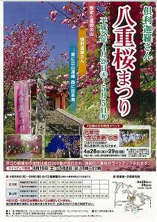 2016年 倶利迦羅さん八重桜まつり